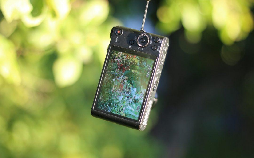 Gute Fotos mit der digitalen Kompaktkamera