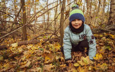 Abenteuer Wald für Familien